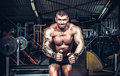 Body Builder Working Royalty Free Stock Photo