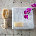 Body care with loofah brush, glycerin soap, white cotton towel Royalty Free Stock Photo