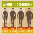 Body mass index retro poster infographics vector illustration Royalty Free Stock Photos