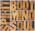 Body mind soul and spirit word abstract a collage of isolated text in vintage wood letterpress printing blocks Stock Photography