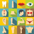 Body parts icons set, flat style