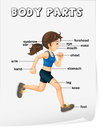 Body parts illustration of girl running with labelled Stock Photos