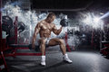Bodybuilder athletic guy , execute exercise press with dumbbells, Royalty Free Stock Photo