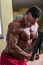 Bodybuilder doing heavy weight exercise for triceps with cable body builder Royalty Free Stock Photos