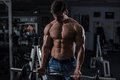 Bodybuilder in the gym handsome works out pushing up excercise Royalty Free Stock Photo