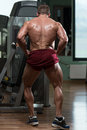 Bodybuilder performing rear lat spread pose body builder Royalty Free Stock Photos