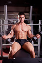 Bodybuilder training in a gym Royalty Free Stock Photos