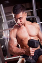 Bodybuilder training in a gym Royalty Free Stock Photography