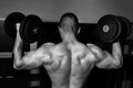 Bodybuilder training in the gym black and white Royalty Free Stock Photos