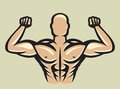 Bodybuilder vector illustration of the Stock Image