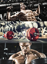 Bodybuilding execute exercise press with weight in gym collage of photo Stock Photography