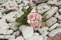 Boeket van roze en witte rozen Royalty-vrije Stock Fotografie