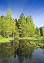 Bog lake Stock Photo
