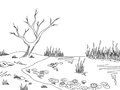 Bog swamp graphic black white landscape sketch illustration