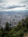 Bogota Tree And City View Portrait Royalty Free Stock Photo