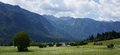 Bohinj lake in Slovenia Royalty Free Stock Photo