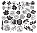 Boho Black Decorative Plants A...