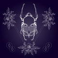 Boho tattoo. Blackwork beetle, May bug in hipster triangle frame Royalty Free Stock Photo