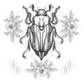 Boho tattoo. Blackwork Scarab beetle Royalty Free Stock Photo