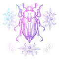 Boho tattoo. Color Scarab beetle, May bug in hipster triangle Royalty Free Stock Photo