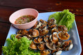 Boil blood cockle seafood with sea food sauce thai food thailand Stock Image