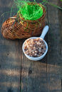 Boiled buckwheat and wicker toy clog rich artificial grass on the old wood board Stock Photo