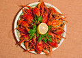Boiled crawfish with lemon and parsley Stock Images