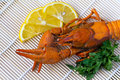 Boiled crayfish with a lemon and parsley Royalty Free Stock Images