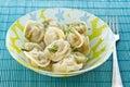 Boiled dumplings Royalty Free Stock Photo