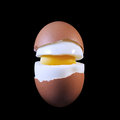 Boiled egg in a cut Royalty Free Stock Photo