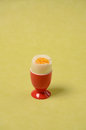 Boiled egg on a green background Stock Photography