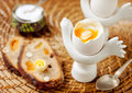 Boiled egg and whole grain bread Stock Photography