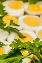 Boiled eggs cut in halfs