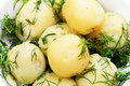 Boiled potatoes with dill Royalty Free Stock Image