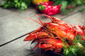 Boiled red crayfish or crawfish with a herbs Royalty Free Stock Photo