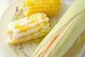 Boiled sweet corn and cob in a plate Royalty Free Stock Photo