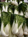 Bok Choy Greens Royalty Free Stock Photo