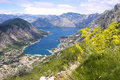 Boka Kotorska bay panorama Stock Photography