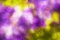 Bokeh background yellow and purple abstract with and stars Stock Photo