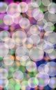 Bokeh foreground Royalty Free Stock Photos