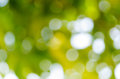 Bokeh green Royalty Free Stock Photos