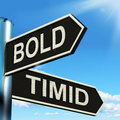 Bold Timid Signpost Shows Extroverted And Shy