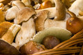 Boletes in the basket Stock Images