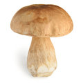 Boletus edulis or cep mushroom on white Royalty Free Stock Image