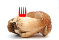 Boletus edulis picture of a Royalty Free Stock Images