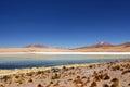 Bolivien - Nationalpark Eduardo-Avaroa Lizenzfreie Stockfotos