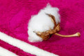 Boll of cotton terry towels on Royalty Free Stock Photo