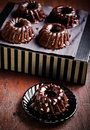 Bolo do bundt do chocolate mini Fotografia de Stock Royalty Free