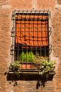 Bologna house window with red textile blinds and flowerpot Royalty Free Stock Photo