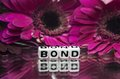 Bond message with pink flowers Stock Photography